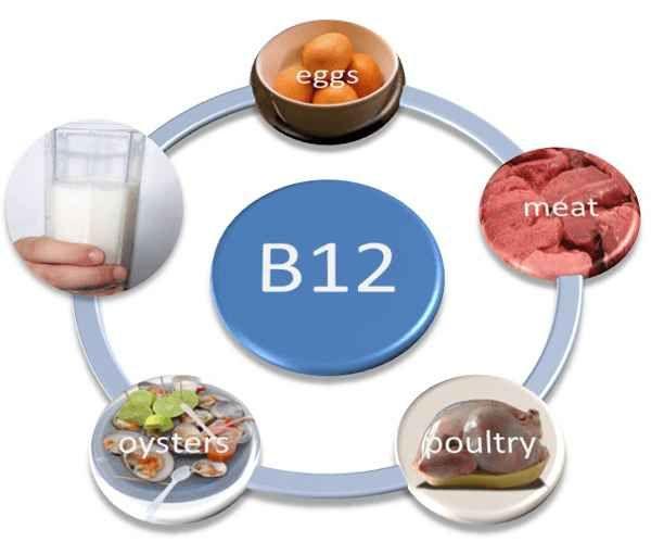 Les aliments riches en B12