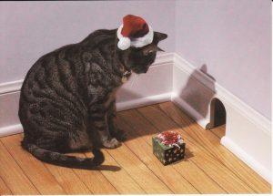 Le Noël du chat
