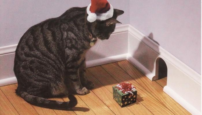 Idées cadeau de Noël pour son chat