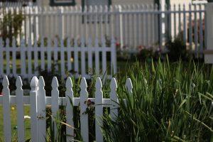 clôture bois blanc